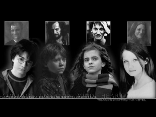 Harry,Ron,Hermione,Ginny