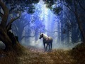 In The Woods - unicorns wallpaper