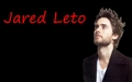 Jared Leto Wallpaper - 30-seconds-to-mars wallpaper