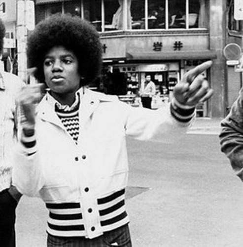 madami MJ