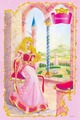 Princess Aurora - princess-aurora photo