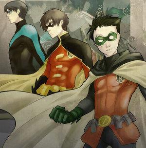 Robin-mania!