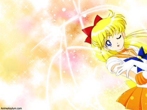 Sailor Venus wallpaper