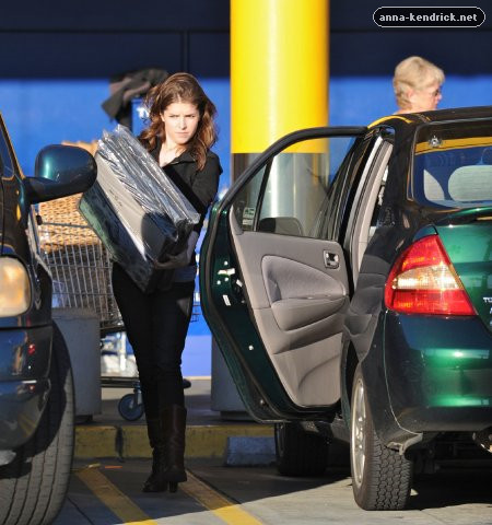 Shopping at Ikea in Burbank [February 10, 2010]