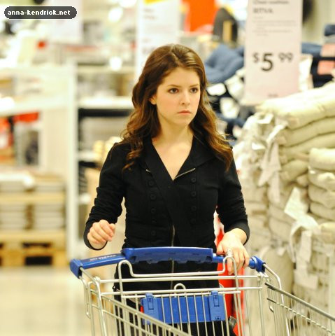 Shopping at Ikea in Burbank [February 10, 2010]