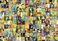 Simpsons Collage - the-simpsons photo