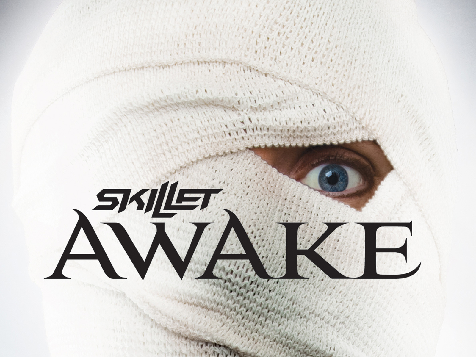 Skillet Images Skillet Awake Wallpaper Hd Wallpaper And