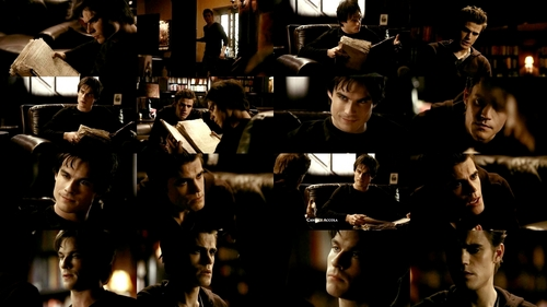 damon and stefan 1x14