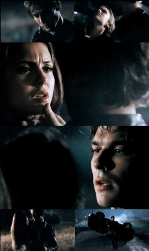 damon saves elena 1x11