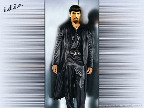 leather mirror spock