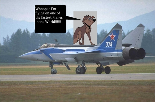 звезда on a Mig 31
