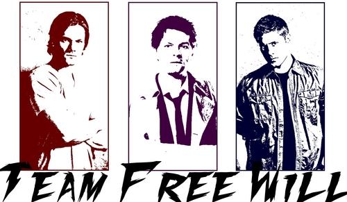 team.free.will