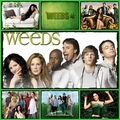 weeds - weeds fan art