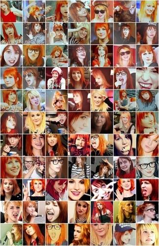 .. Hayley's face