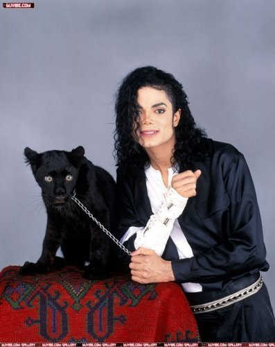 Animal lover <3