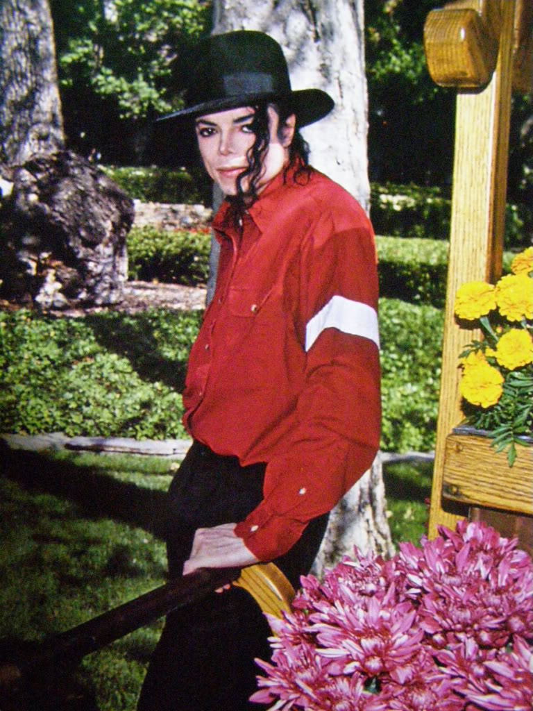Breathtaking - michael-jackson photo
