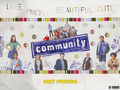 Community Cast Wallpaper - community wallpaper