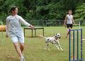 Dog Agility Class Atlanta GA