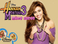 Hannah Montana secret Pop Star - hannah-montana wallpaper