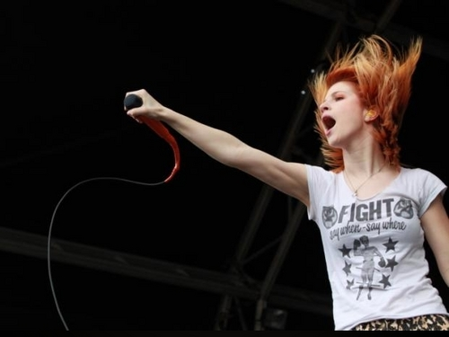 Hayley, Soundwave Festival