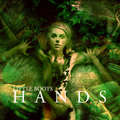 LB Hands Album Artwork - little-boots fan art
