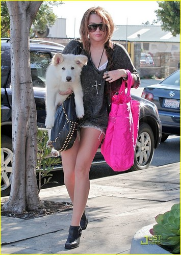 MILEY AND MATE FEB.20 AT TEH STUDIO!