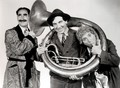 Marx Brothers - marx-brothers photo
