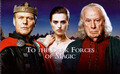 Merlin Series 2 Booklet