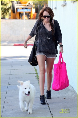 Miley & Mate out in Studio City