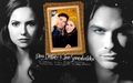 Nina D & Ian S - ian-somerhalder-and-nina-dobrev wallpaper