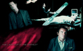 Nip Tuck Final Season - nip-tuck wallpaper