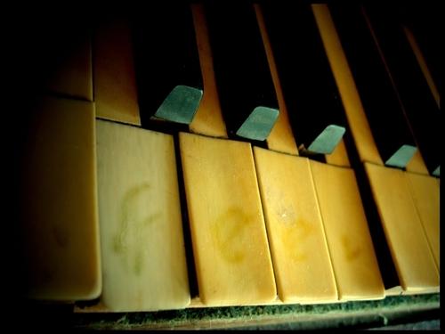 Piano wallpaper titled Piano
