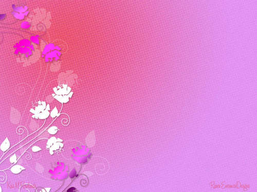 Pink (Color) wallpaper entitled Pink wallpaper