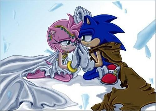 Sonic the hedgehog & amyrose princess and her knight