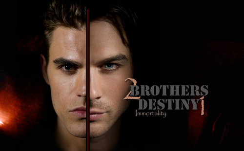 The Salvatore Brothers پیپر وال