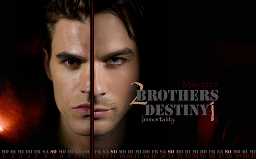 The Salvatore Brothers 壁纸