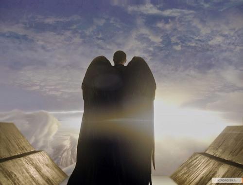 Wings of an arhangel