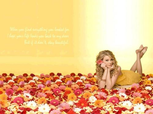 Taylor Swift wallpaper entitled new taylor wallpaper!!