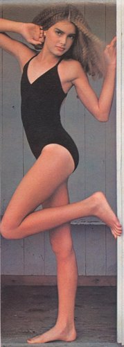 Brooke Shields wallpaper entitled swimsuit model