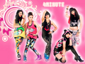 4minute shines~~ - 4-minute wallpaper