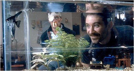 A fish called wanda images a fish called wanda wallpaper for A fish called wanda