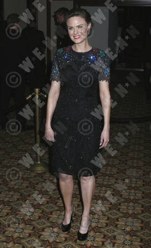American Society of Cinematographers 24th Annual  - bones Photo