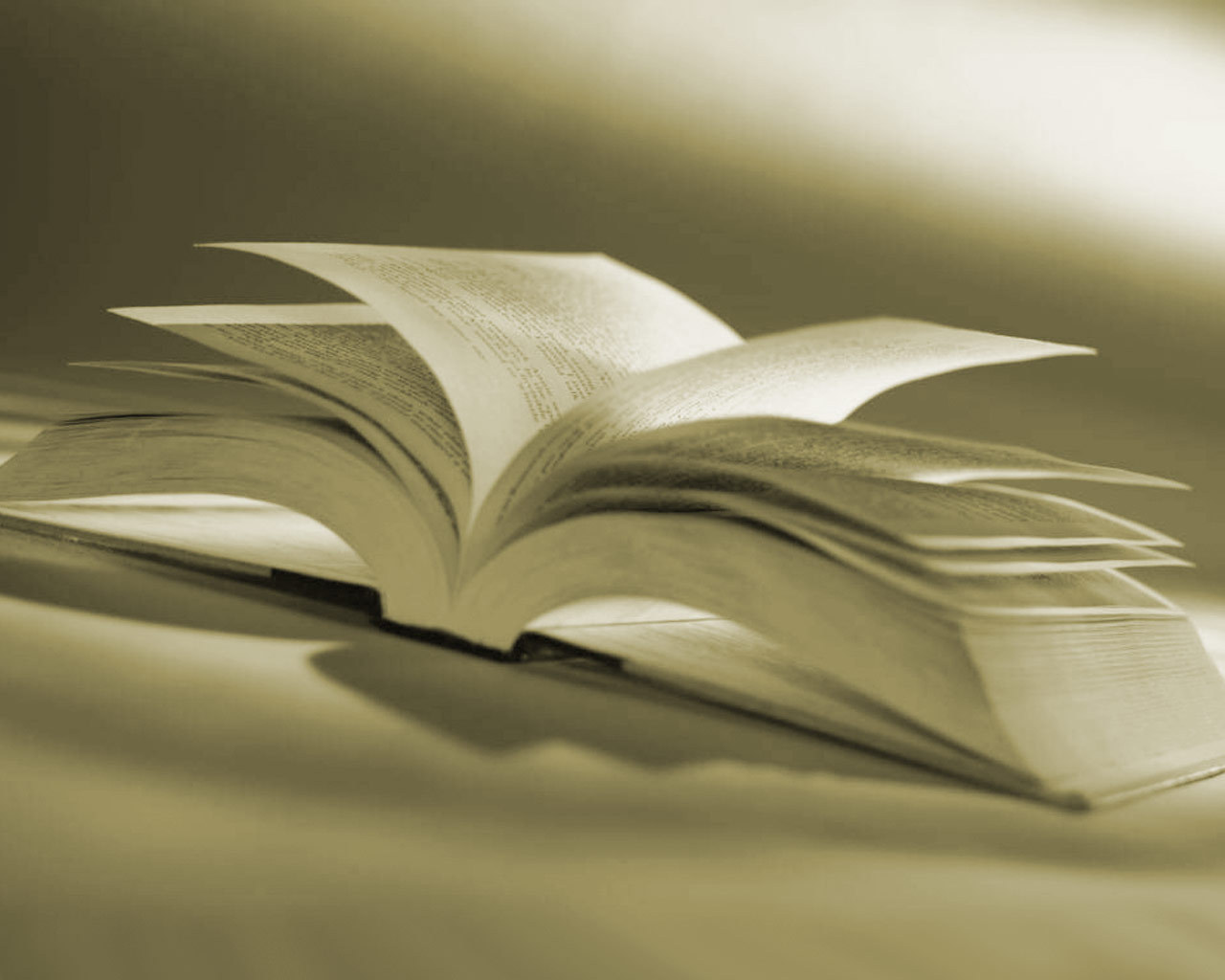 livres fond d'écran