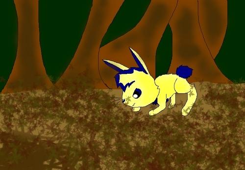 Boomer Bunny