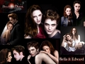 Breaking Dawn Wallpaper - edward-and-bella fan art