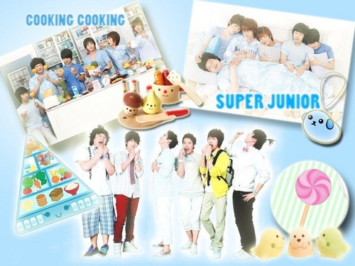 Cooking Super Junior - super-junior Wallpaper