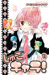 Cover Volume 11
