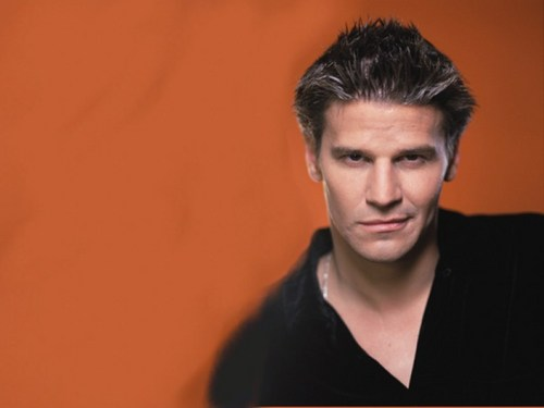 David Boreanaz wallpaper called David Wallpaper