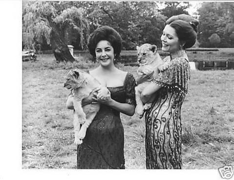 Diana Rigg kertas dinding titled Diana with Liz Taylor