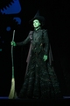 Elphaba the Witch - wicked photo